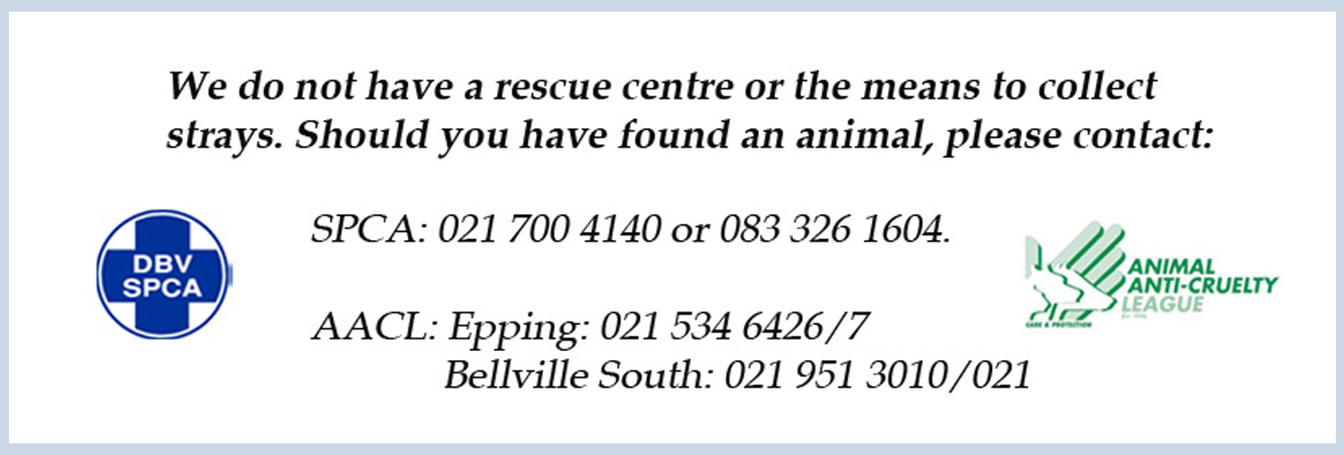 Contact-SPCA-AACL-post