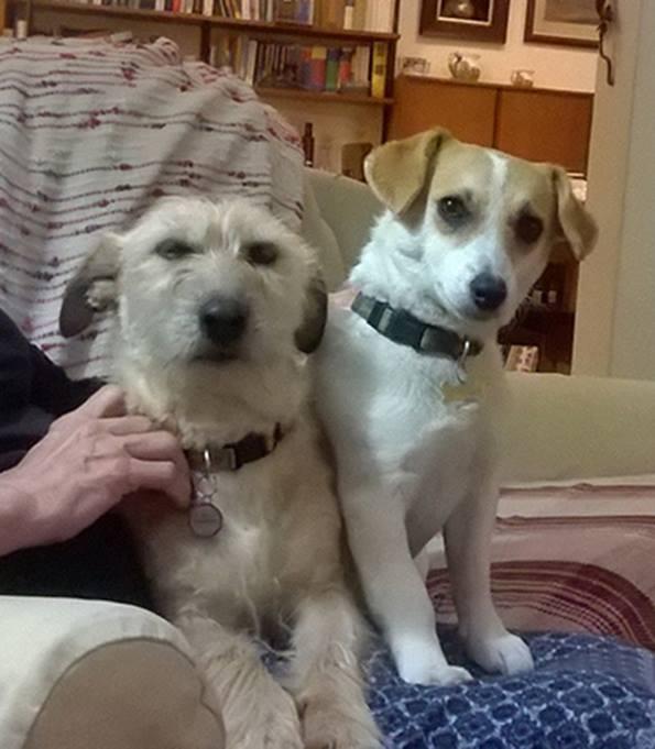 Daisy&Tiggy